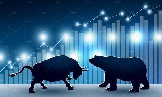 Bullmarked og bearmarked